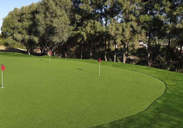 Putting Green Artificial